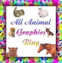All Animal Graphics Ring